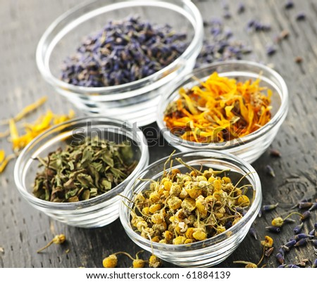 Assortment of dry medicinal herbs in glass bowls - stock photo