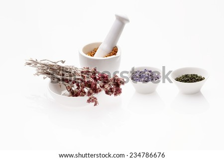 Assortment of dry medicinal herbs in porcelain bowl and mortar with pestle (cornflower, melissa, antennaria and sapindus) - stock photo