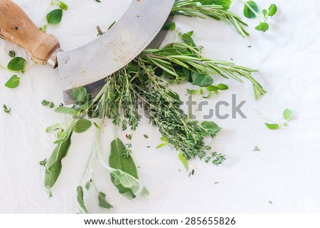 Assortment of fresh herbs thyme, rosemary, sage and oregano with vintage herb's cutter on white textile as background. Top view. - stock photo