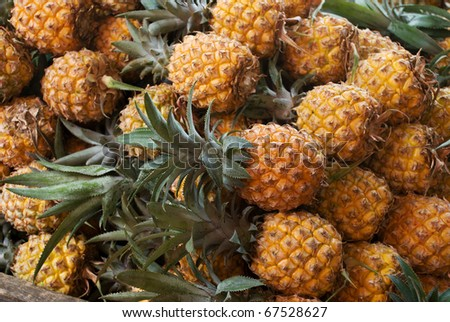 Assortment of fresh pineapple on market tray