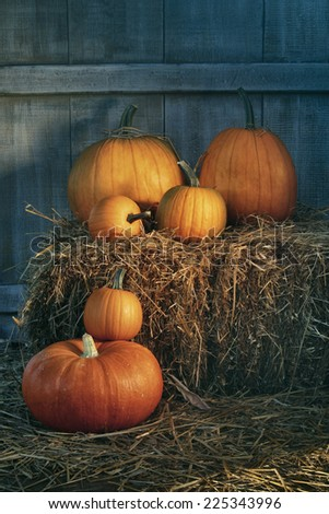 Assortment of pumpkins on hay in the barn - stock photo