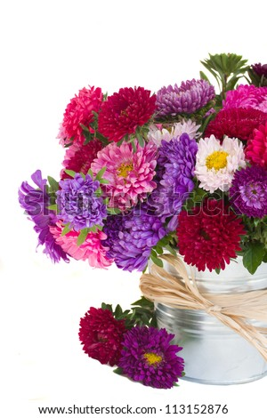 aster flowers in vase  isolated on white background - stock photo