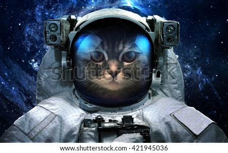 Astronaut cat in outer space. Spacewalk. Elements of this image furnished by NASA - stock photo