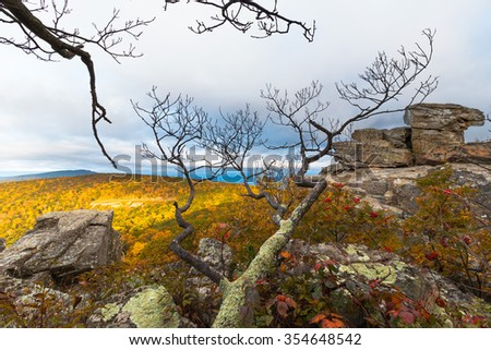 At the High Elevations in Appalachian Mountains - stock photo