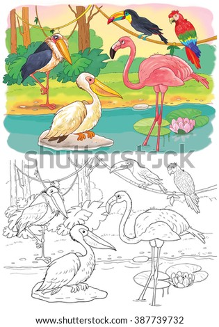 At the zoo. African animals. Cute African birds. A toucan, a parrot, a pink flamingo, a pelican and a marabou. Illustration for children. Coloring book. Coloring page. Cartoon characters.