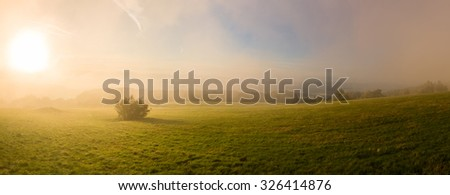 Atmosphere at sunrise on mountain pasture - panorama - stock photo