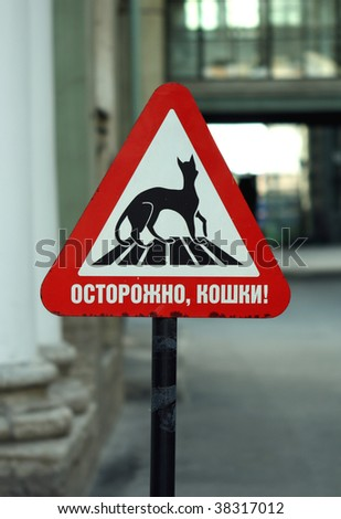 Attantion! Cats! sign in Hermitage - stock photo