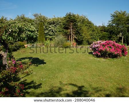 Attractive beautiful English style formal garden classical creative gardening                          - stock photo