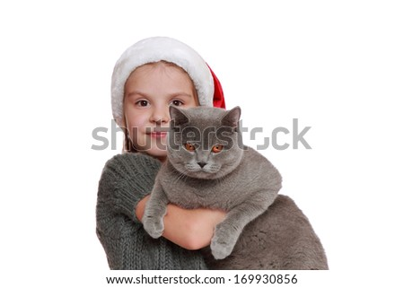 Attractive beautiful young girl holding adorable British cat on christmas background - stock photo