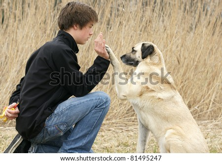 Attractive young man with his crossbreed dog.                                                             Beautiful dog is giving his paw to the young man. He is looking at him.
