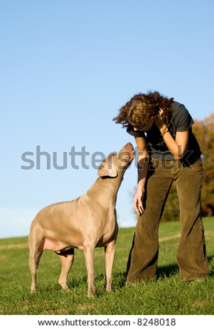 attractive young woman with weimaraner dog