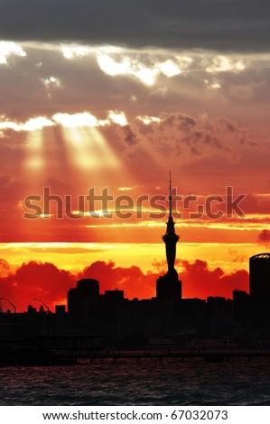 Auckland city night - stock photo