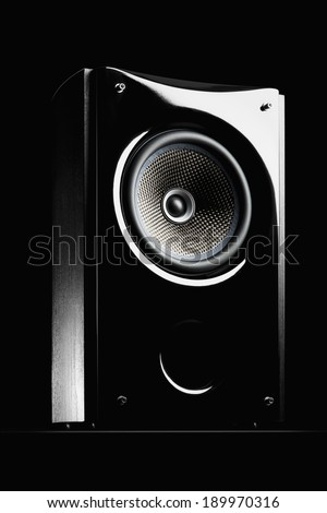 Audio speaker on a black background - stock photo