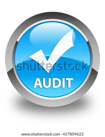 Audit (validate icon) glossy cyan blue round button - stock photo