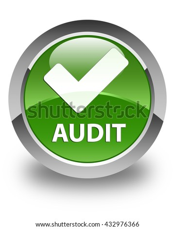 Audit (validate icon) glossy soft green round button - stock photo