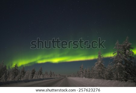 Aurora Borealis dancing over the road and forest