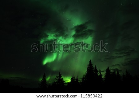 Aurora borealis in an Alaskan sky with clouds and silhouettes of spruce trees.