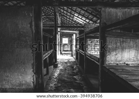 Auschwitz II - Birkenau, aspect of beds at the interior of a brick walled barracks
