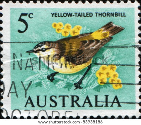 AUSTRALIA - CIRCA 1964: A Stamp printed in Australia shows  Yellow-tailed Thornbill or Yellow-rumped Thornbill (Acanthiza chrysorrhoa), circa 1964 - stock photo