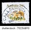 AUSTRALIA - CIRCA 1980s: A stamp printed in Australia shows Thylacine - Thylacinus cynocephalus, circa 1980s - stock photo