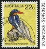 AUSTRALIA - CIRCA 1985: stamp printed by Australia, shows bird, circa 1985. - stock photo