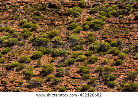 Australia outback, Australian remote plain rural land. dry conditions tropical outback. Texture of sandstone and plants in Kalbarri National Park in Western Australia - stock photo
