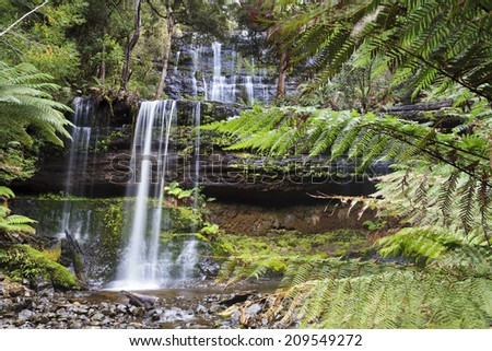Australia Tasmania Mt Field national park Russell cascade water falls surrounded by green fern trees  - stock photo