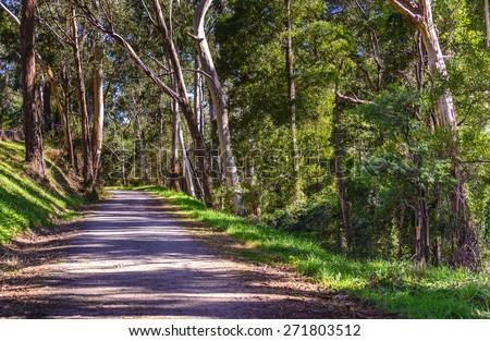 Australian country rail trail in autumn - stock photo