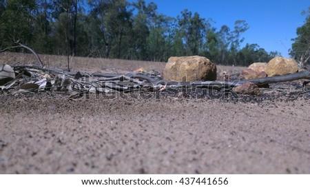 Australian desert - stock photo