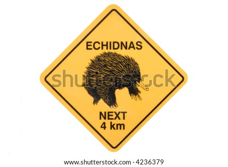 Australian echidna road sign warning isolated on white background - stock photo