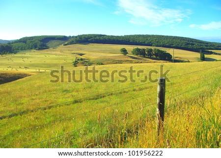 Australian landscape with in country victoria australia - stock photo