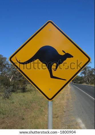 Australian native animal kangaroo road sign - stock photo