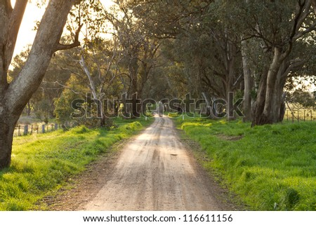Australian rural dirt road landscape in late afternoon sun - stock photo