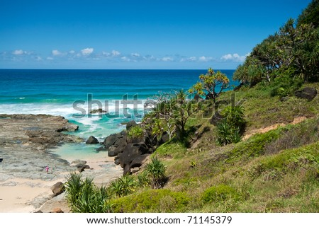 australian seascape during the day with native trees in foreground (tweed heads,nsw)