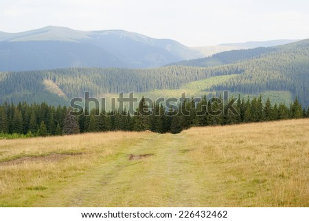Auto path - stock photo