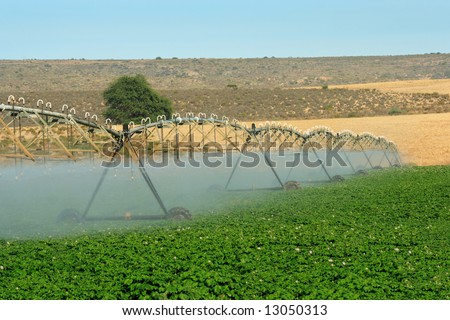 Automatic irrigation system on an agricultural farm in the Western Cape of South Africa - stock photo