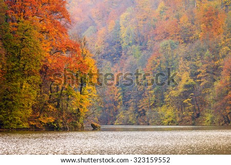 Autum forest lake Hamori - Hungary - stock photo