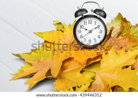 Autumn. - stock photo