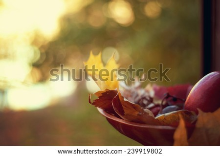 Autumn abstract background. Selective Focus - stock photo