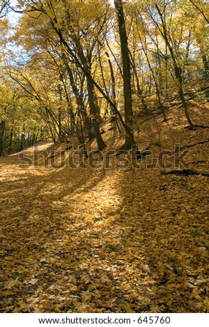 Autumn along the Mississippi River in Minneapolis - stock photo