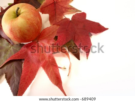Autumn Apple