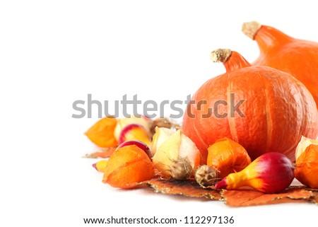 Autumn arrangement with Hokkaido pumpkins, physalis on white background - stock photo
