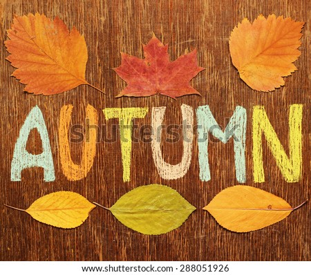 Autumn background. - stock photo