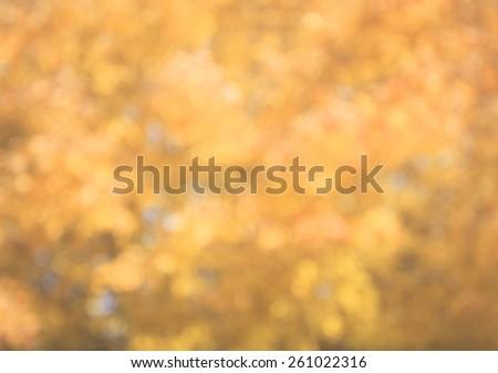 Autumn Background Blur - stock photo