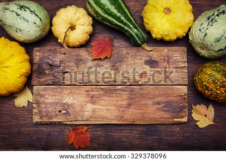 Autumn background concept. Pumpkins on a wooden board with copyspace.  - stock photo