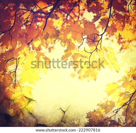 Autumn background. Fall Abstract vintage autumnal border background with colorful leaves  - stock photo