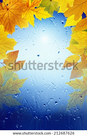 Autumn background - falling maple leaves, window with rain drops, rainy day, season is fall, vertical picture for smartphone - stock photo