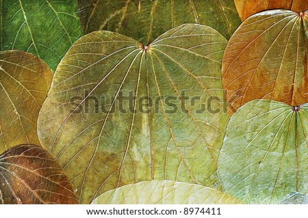 autumn background from natural leafs - stock photo