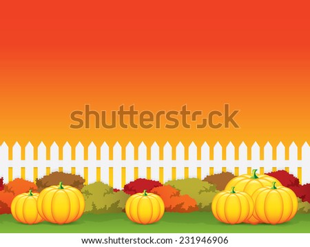Autumn background.Pumpkins - stock photo