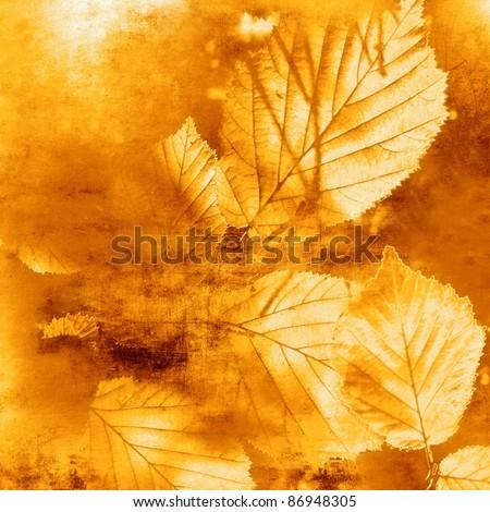 Autumn background, vintage autumn leaves - stock photo
